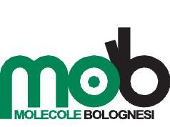 MOB Solidali